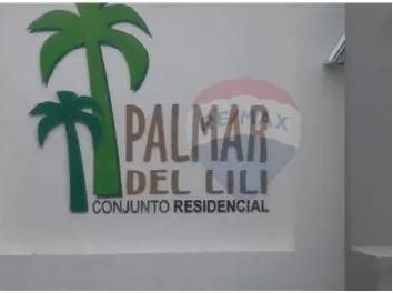 CONJUNTO PALMAR DEL LILI